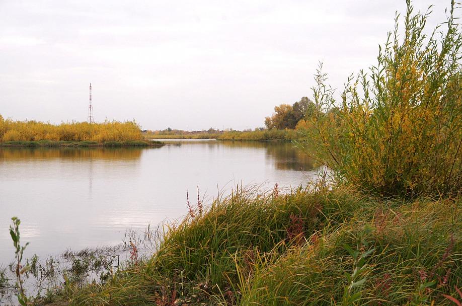 Прикрепленное изображение: Осень_2.jpg