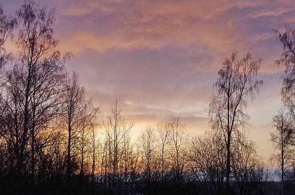 Прикрепленное изображение: Рассвет.JPG