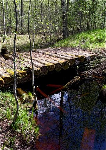 Прикрепленное изображение: IMGP1283-Старый-Мост-600.jpg