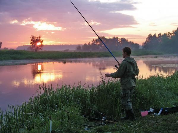 Дурниха рыбалка цены