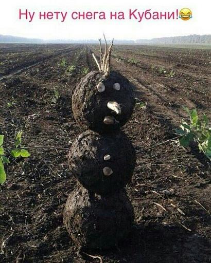 Прикрепленное изображение: Кубанский Снеговик.jpg