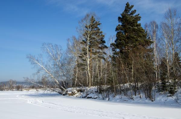 Прикрепленное изображение: зима.jpg