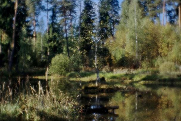 Прикрепленное изображение: IMGP2011pc.jpg