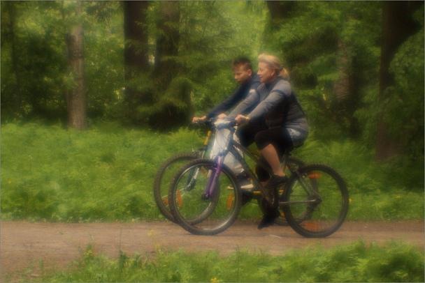 Прикрепленное изображение: knn_Pavlovsk2019(1)_Fused silica_120mm_1200.jpg