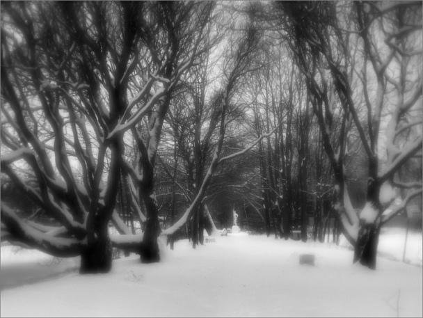 Прикрепленное изображение: knn_KamennyiOstrov2019(1)_Industar95-1-1_24mm_800.jpg