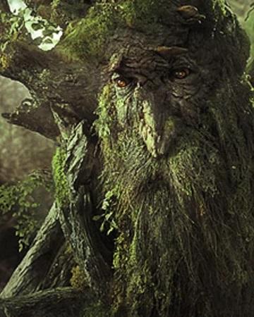 Прикрепленное изображение: Treebeard2.jpg