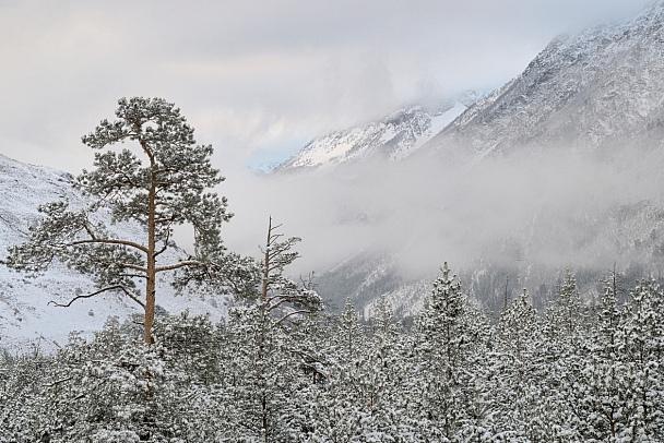 Прикрепленное изображение: Winter_Gone_Publ.jpg