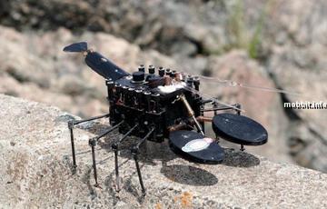 Прикрепленное изображение: intr_robots_2.jpg