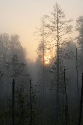 Прикрепленное изображение: Voshod.jpg
