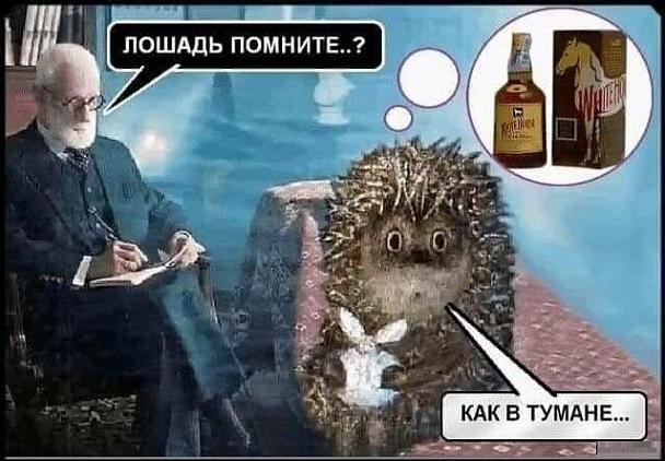 http://www.penta-club.ru/forum/uploads/post-9613-0-12628000-1550732126_thumb.jpg